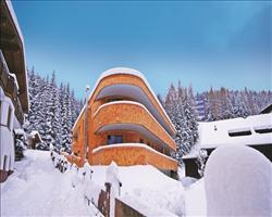Chalet Albona (Mountain Lodge)