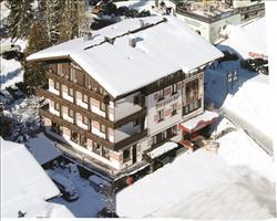 Chalet Hotel Pinzgauerhof (Hinterglemm)