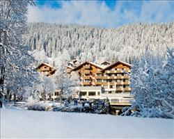 Hotel Silvretta Park