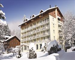 Hotel Wengenerhof
