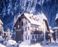 Hotel Medil - Campitello