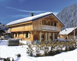 NEW Chalet Couer
