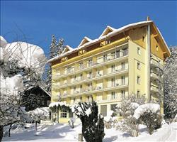 Hotel Wengenerhof, Wengen